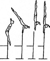 turn (540 ) to hstd or with hips bent; also with hop hips