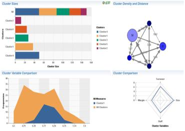 SAP BusinessObjects Predictive Analysis Visualize,