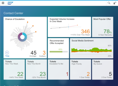 SAP Cloud for Social Engagement Customer Insight 2015