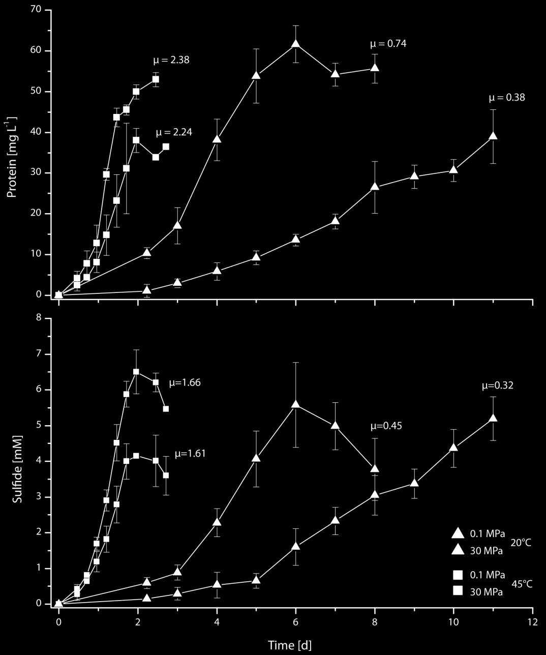 Fig. 4.3: Growth curves and rates of Dv. Indone nsiensis P23 Adaptation of growth and membrane lipid composition of a piezothermophilic sulfate reducer Fig. 4.3: Growth curves and rates µ [d -1 ] of strain P23 grown at atmospheric (0.