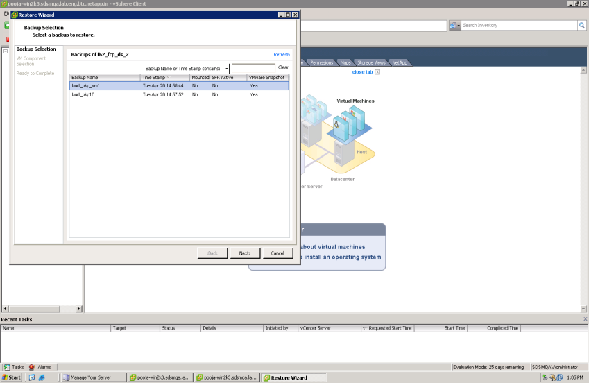 vsphere navigation tree Adhoc Sicherung oder via Scheduler VMware filesystem- oder