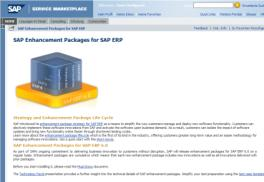 ERP Was IT Profis über SAP Enhancement Packages wissen sollten & How to Install EHP s: A Practical Guide SAP