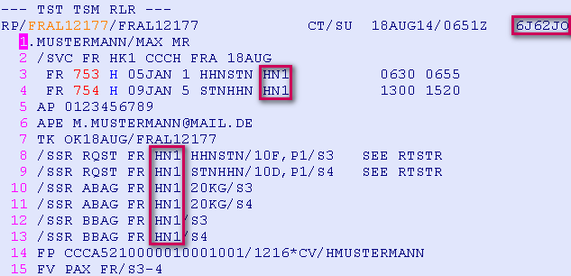 Schritt 8 (optional): Anzeige der Preisberechnung für Flüge und Services TQT - TST Anzeige (Transitional Stored Ticket) TQM Anzeige der TSM Liste (Transitional Stored MCO), hier Kreditkartenentgelt,