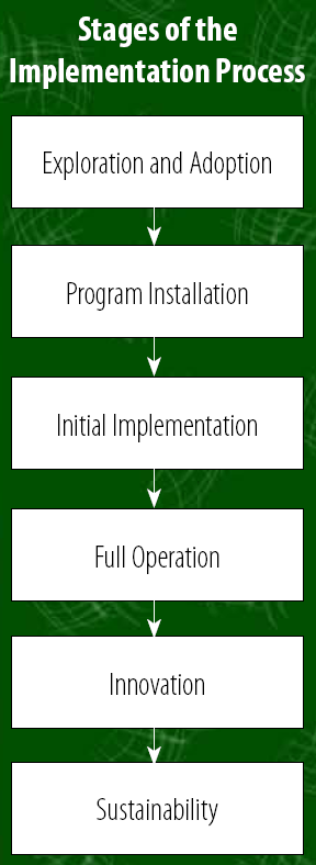 Definition Implementation Implementation can be described as a change process within an organization.