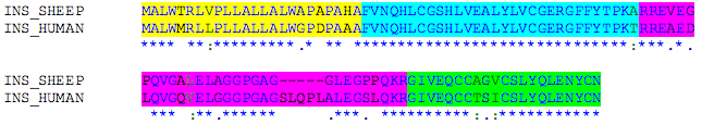 Anhang III Signalpeptid B-Kette C-Peptid A-Kette INS_HUMAN VS INS_PIG n * % n * % n * % n * % 20 83,3 29 96,7 24 68,6 21 100 Signalpeptid B-Kette C-Peptid A-Kette INS_HUMAN VS INS_RABIT n * % n * % n