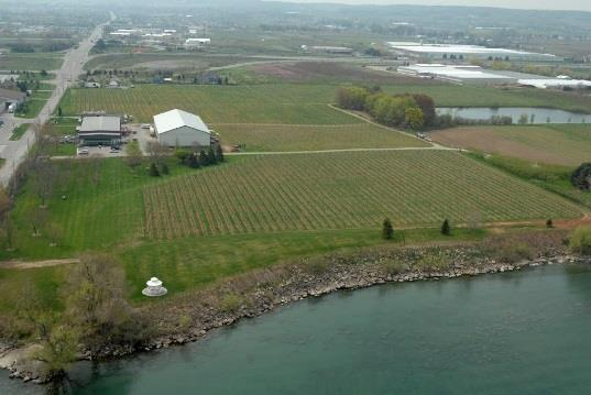 Niagara Winery Sell-side Mandate Canada Distillers and Vintners Niagary Winery With High Development Potential Key investment considerations: Prestigious award-winning VQA wine maker.