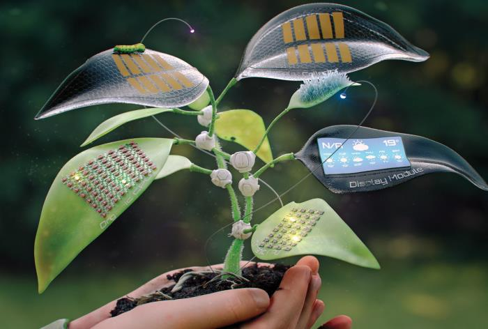 54 Electronics with Biodegradable and