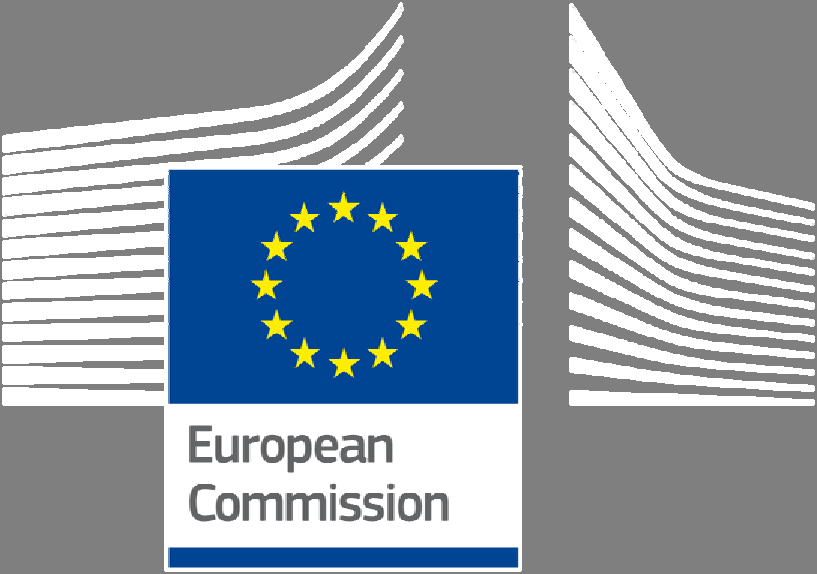 Flash Eurobarometer COMPANIES ENGAGED IN ONLINE ACTIVITIES REPORT Fieldwork: January-February 2015 Publication: May 2015 This survey has been requested by the European Commission, Directorate-General