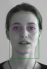 biometrischen Merkmalen Classification Classification