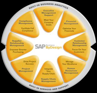 SAP Business