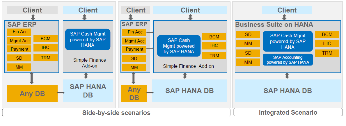 SAP Simple Finance Add-on / Cash Management SAP IHC = In-House-Cash SAP