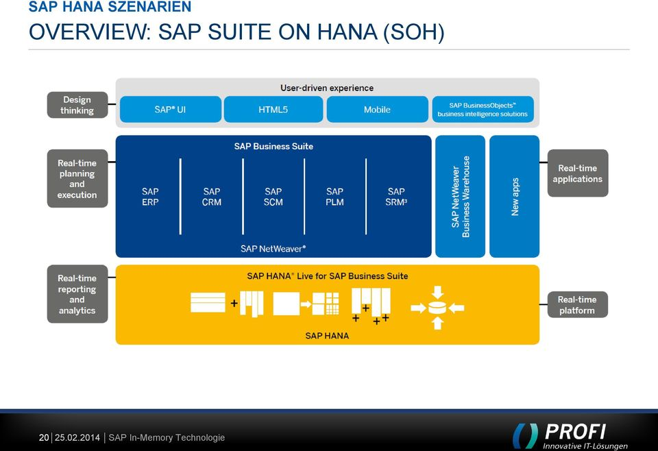 OVERVIEW: SAP