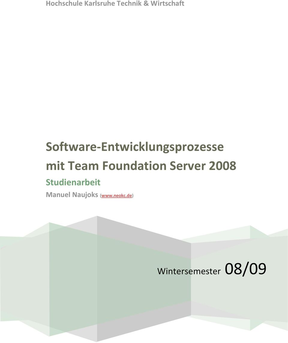 Foundation Server 2008 Studienarbeit