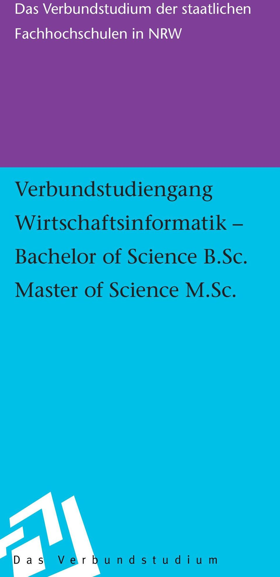 Wirtschaftsinformatik Bachelor of Science B.