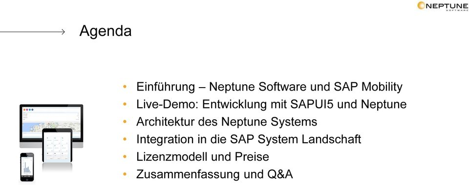 Architektur des Neptune Systems Integration in die SAP