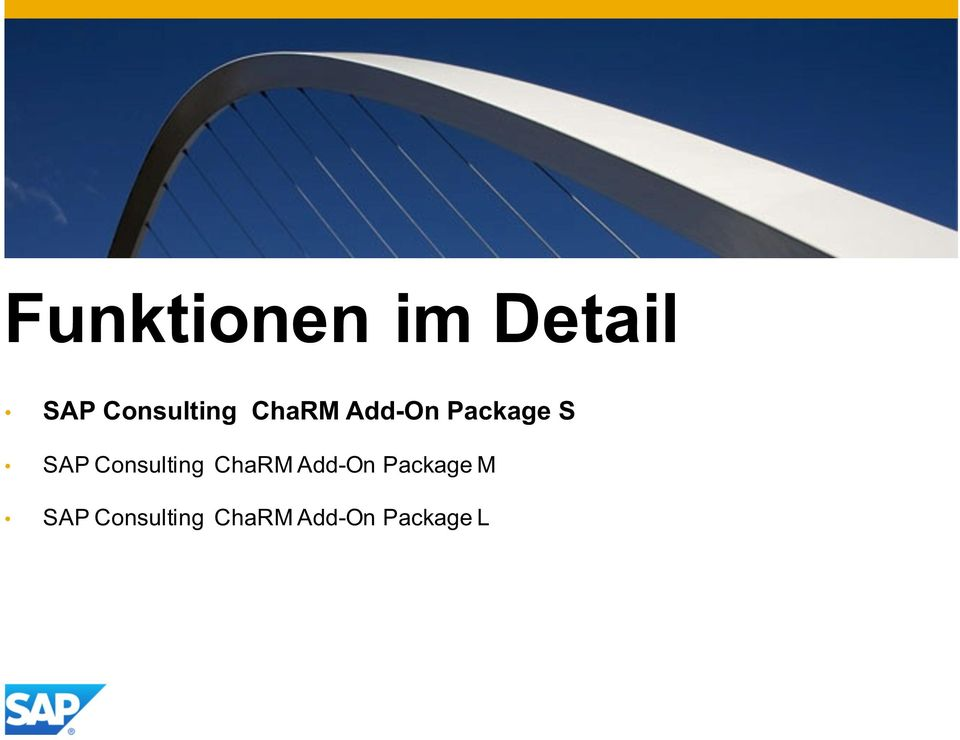 S SAP Consulting ChaRMAdd-On