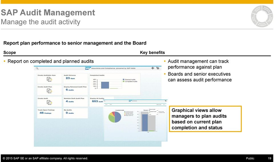 and senior executives can assess audit performance Graphical views allow managers to plan audits based