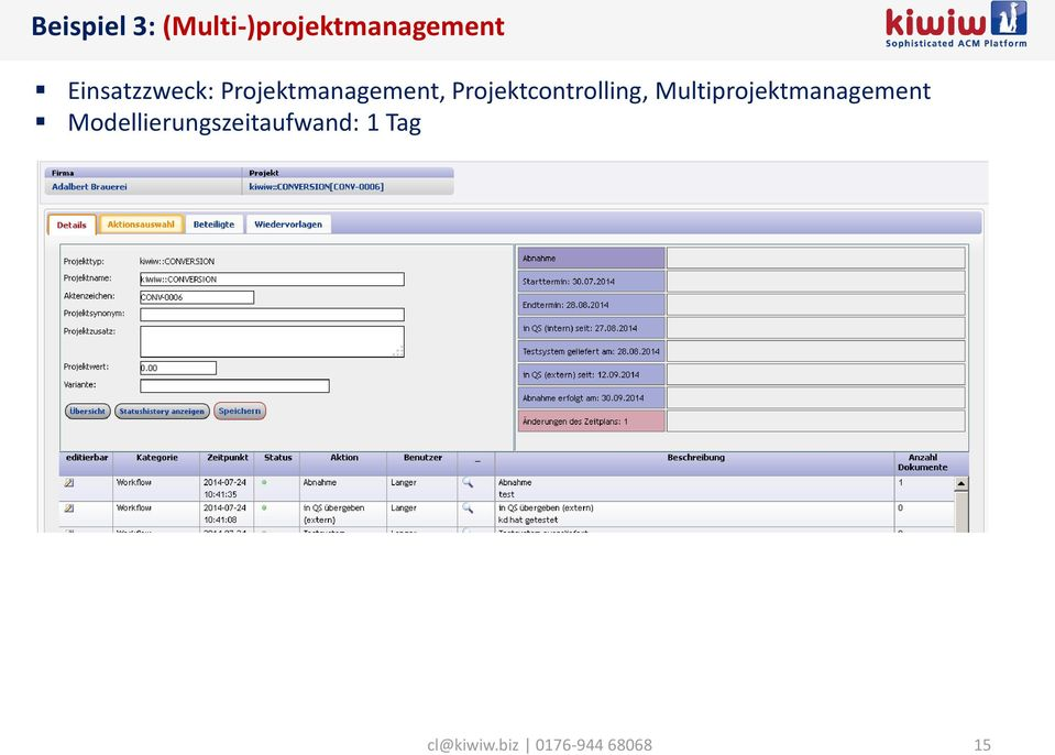 Projektcontrolling, Multiprojektmanagement