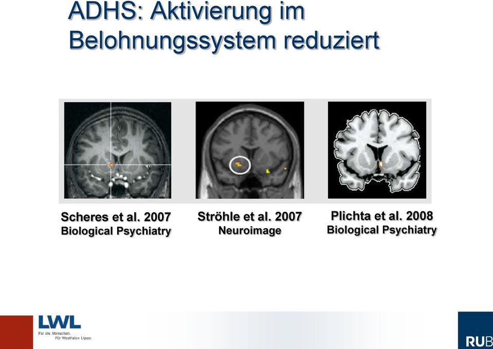 2007 Biological Psychiatry Ströhle et al.