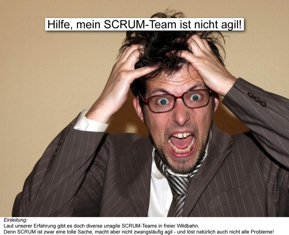 SCRUM-Teams in freier Wildbahn.