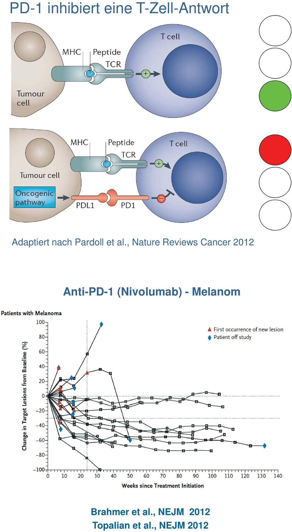 , Nature Reviews Cancer 2012 Anti-PD-1