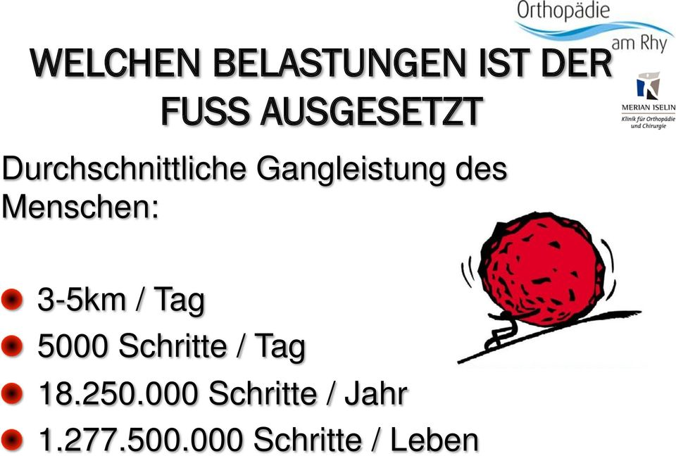 3-5km / Tag! 5000 Schritte / Tag! 18.250.