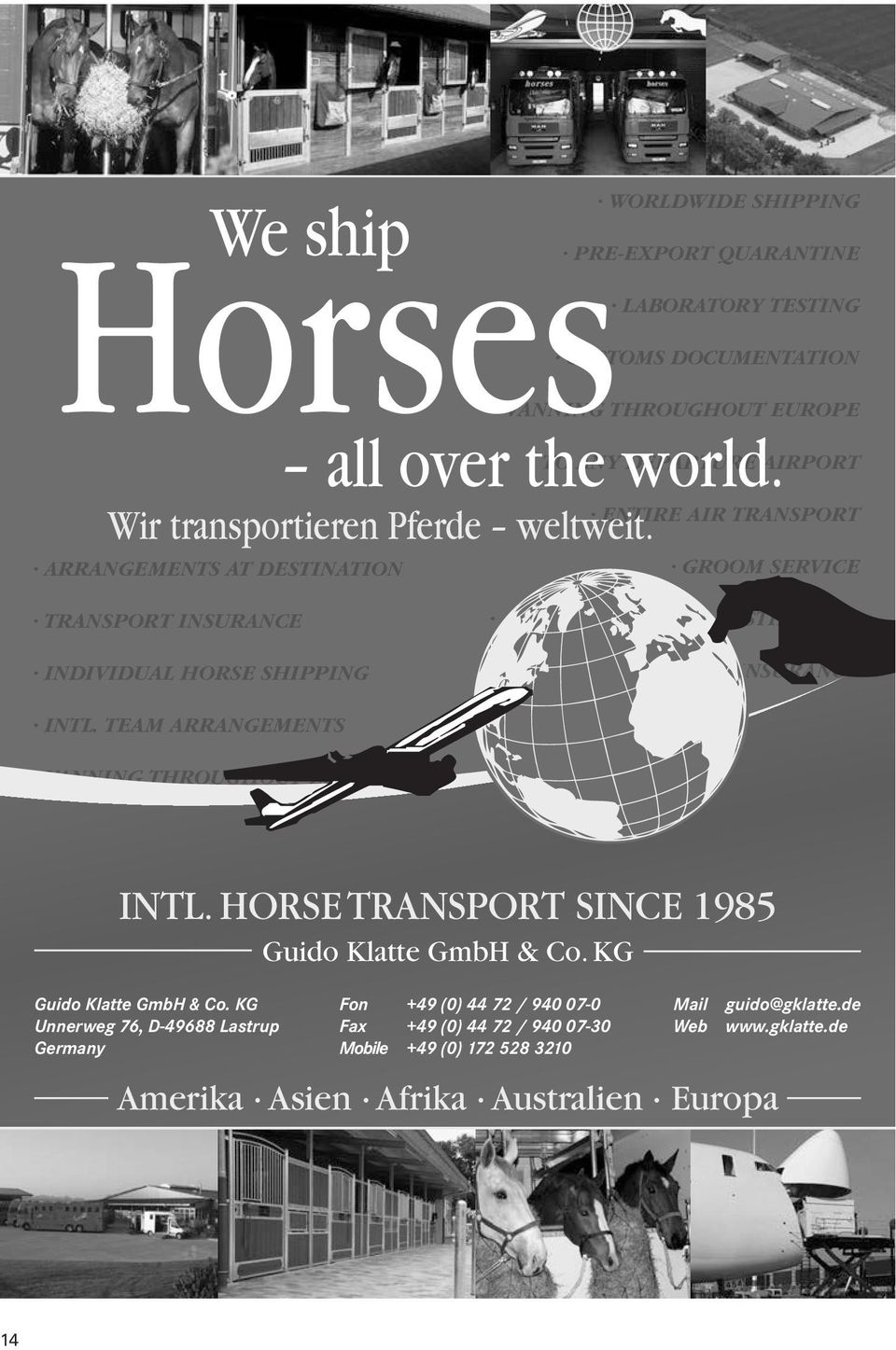 TEAM ARRANGEMENTS VANNING THROUGHOUT EUROPE ARRANGEMENTS AT DESTINATION TRANSPORT INSURANCE INDIVIDUAL HORSE SHIPPING INTL. TEAM ARRANGEMENTS TO ANY DEPARTURE AIRPORT ENTIRE AIR TRANSPORT INTL.