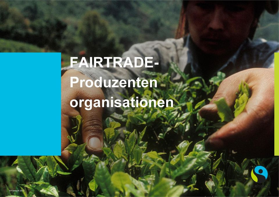 Fairtrade 2012 FAIRTRADE ist
