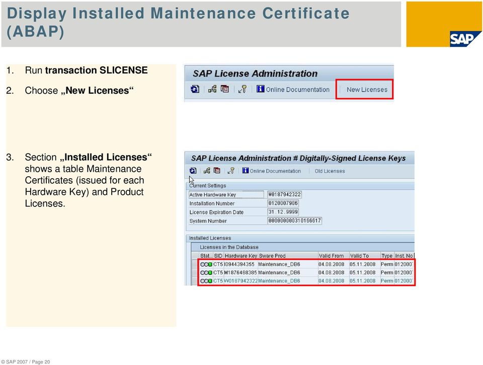 Section Installed Licenses shows a table Maintenance
