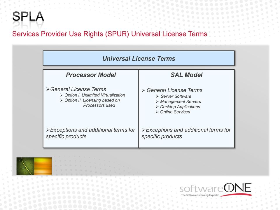 Licensing based on Processors used SAL Model General License Terms Server Software Management Servers