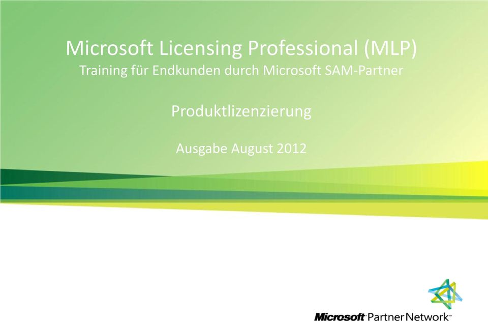 durch Microsoft SAM-Partner