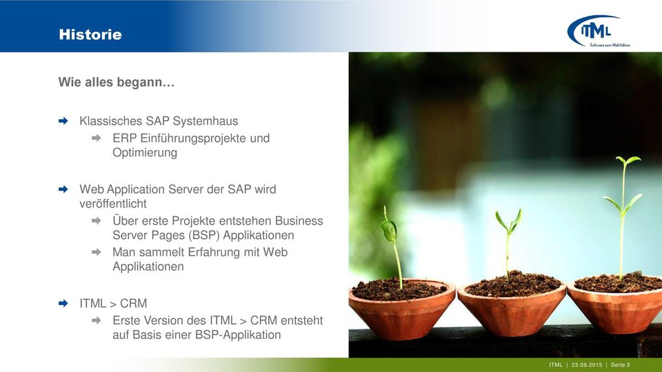 entstehen Business Server Pages (BSP) Applikationen Man sammelt Erfahrung mit Web