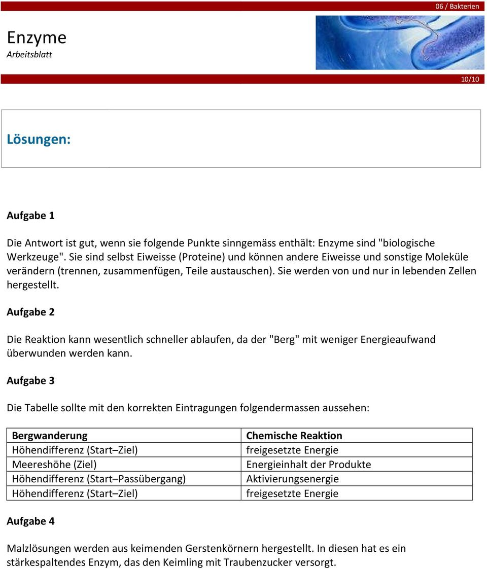Enzyme Informationstext - PDF