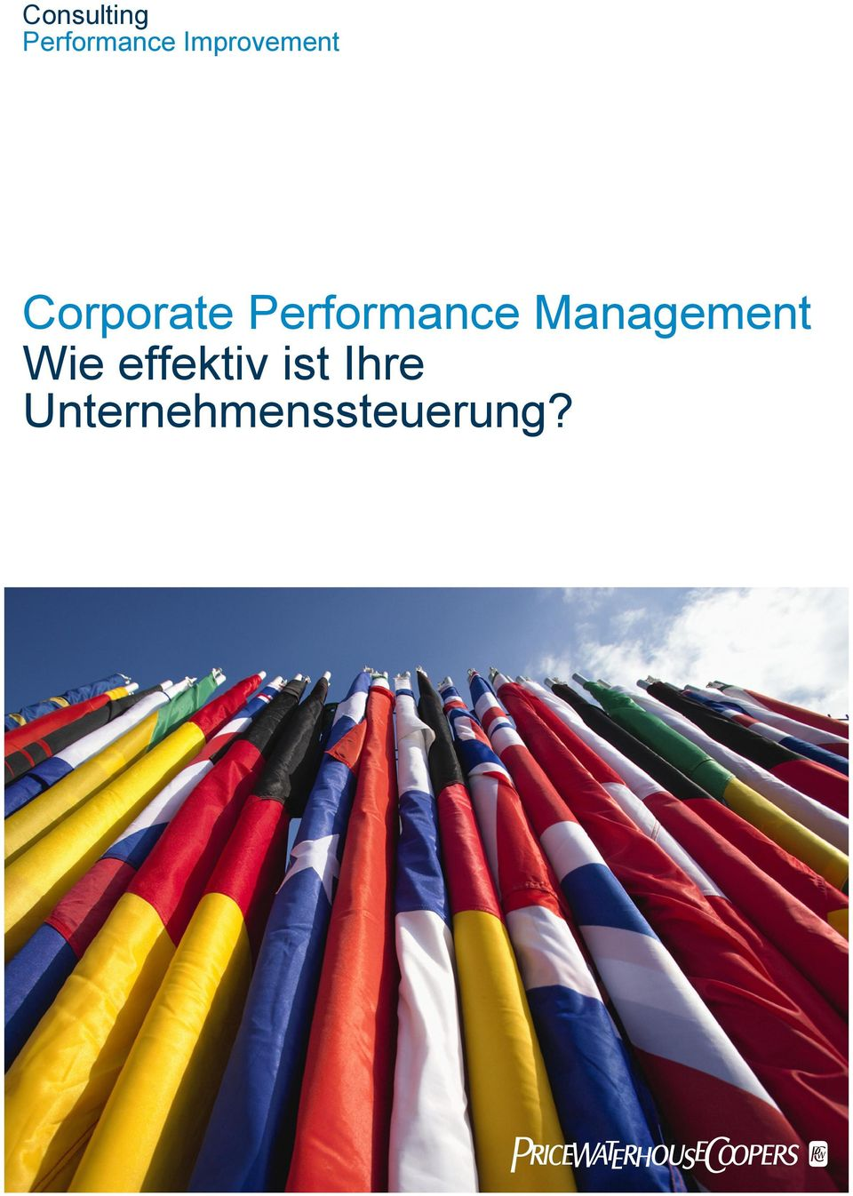 Performance Management Wie