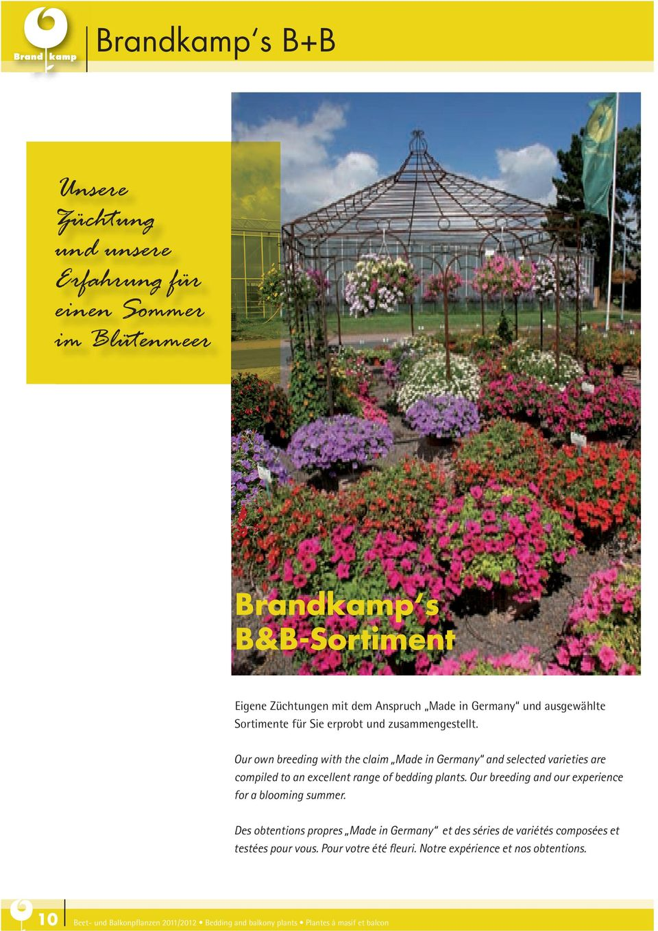 Our own breeding with the claim Made in Germany and selected varieties are compiled to an excellent range of bedding plants.