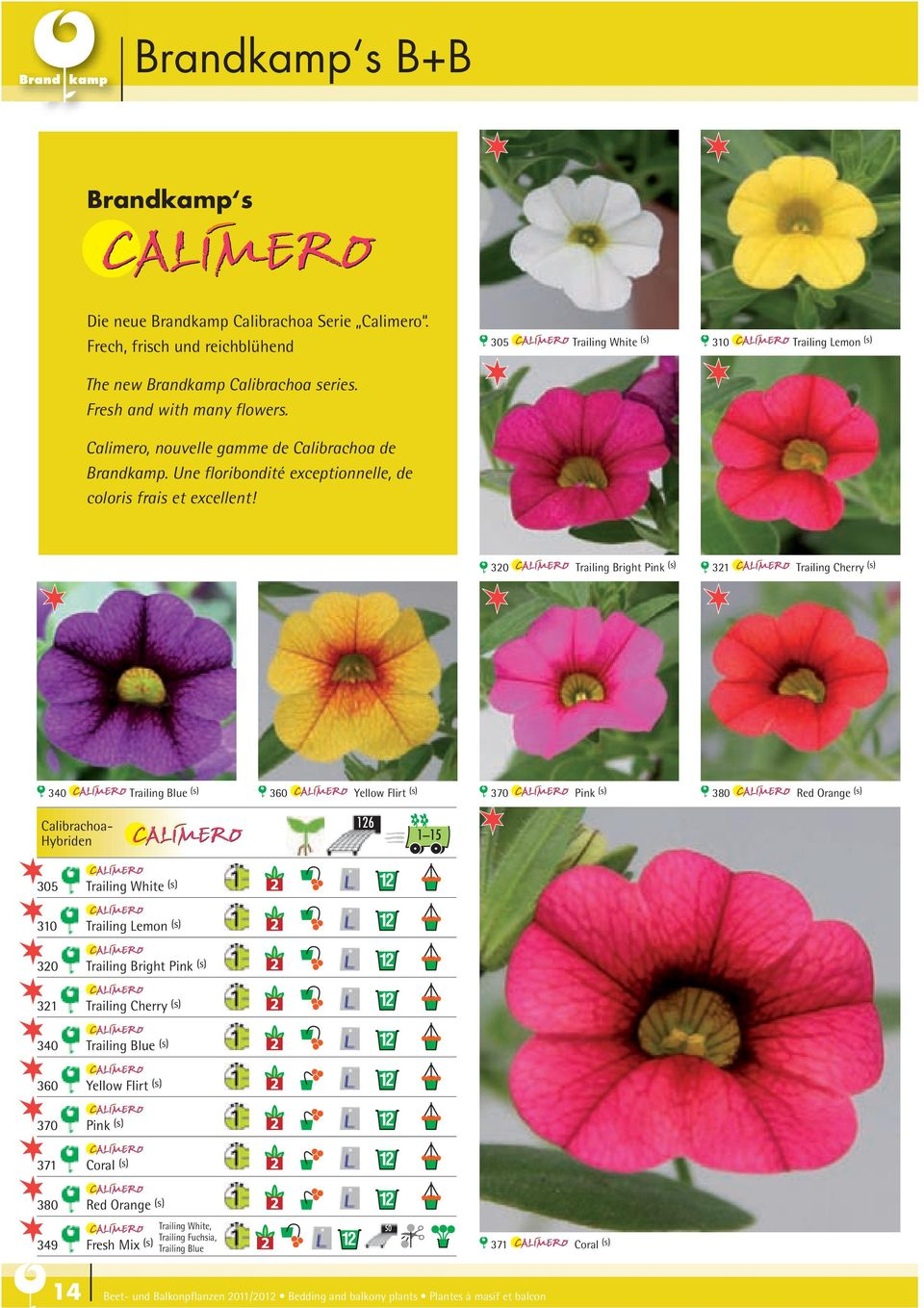 305 Trailing White (s) 310 Trailing Lemon (s) 320 Trailing Bright Pink (s) 321 Trailing Cherry (s) 340 Trailing Blue (s) 360 Yellow Flirt (s) 370 Pink (s) 380 Red Orange (s) Calibrachoa- Hybriden 126