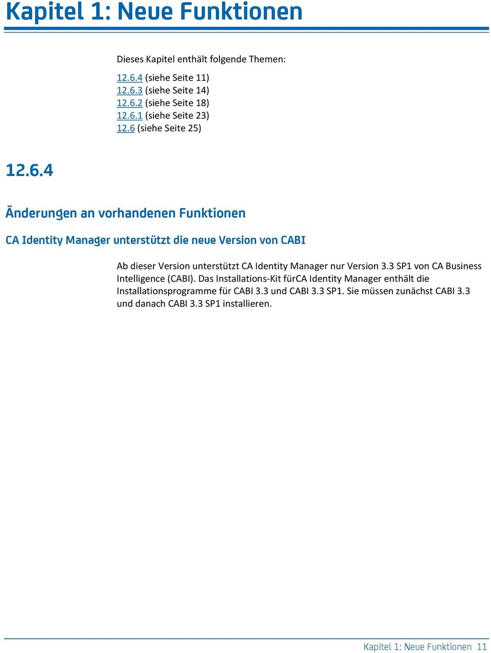 CA Identity Manager nur Version 3.3 SP1 von CA Business Intelligence (CABI).