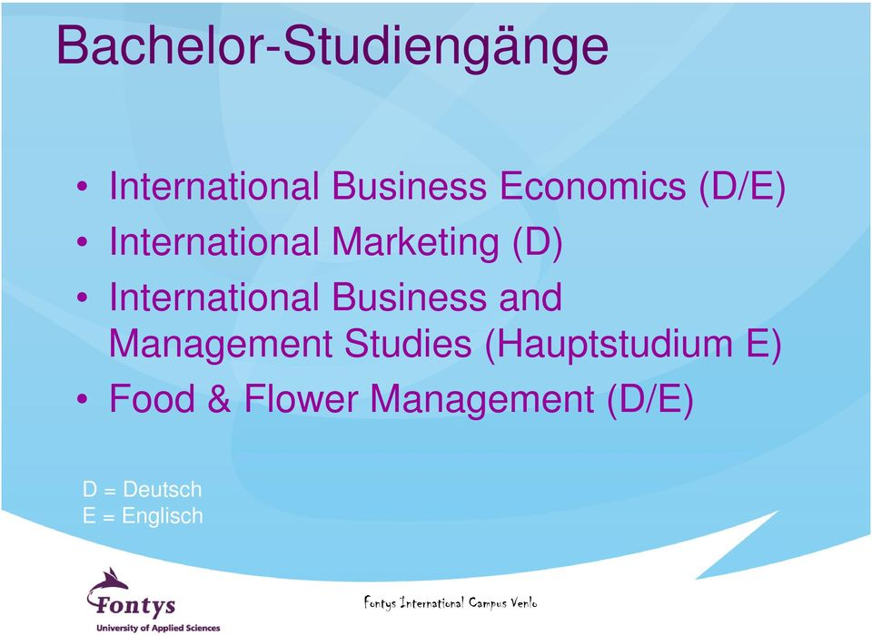 International Business and Management Studies