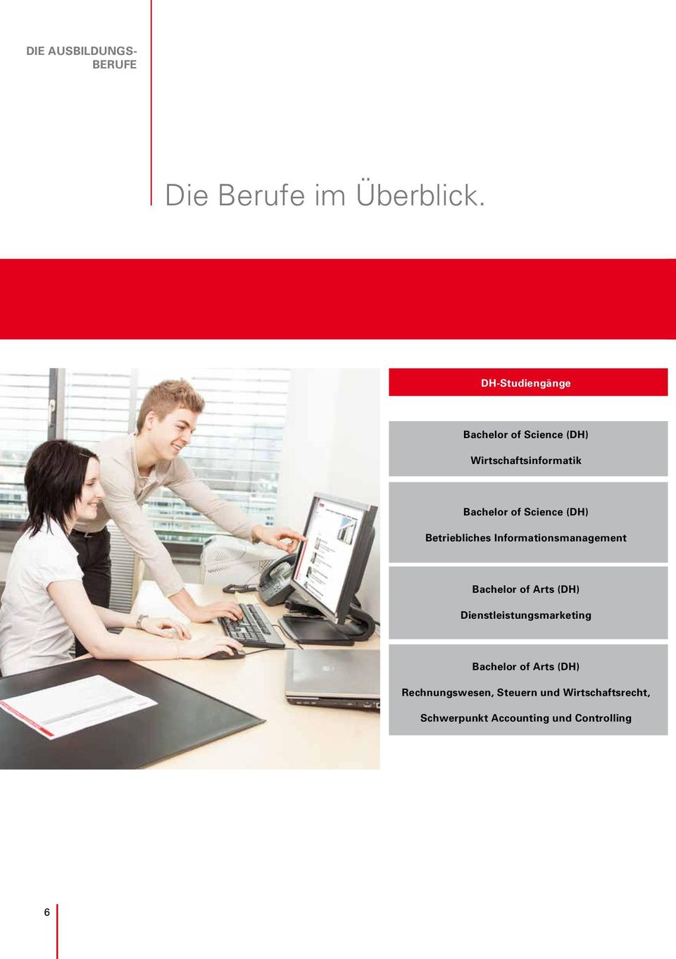 (DH) Betriebliches Informationsmanagement Bachelor of Arts (DH)