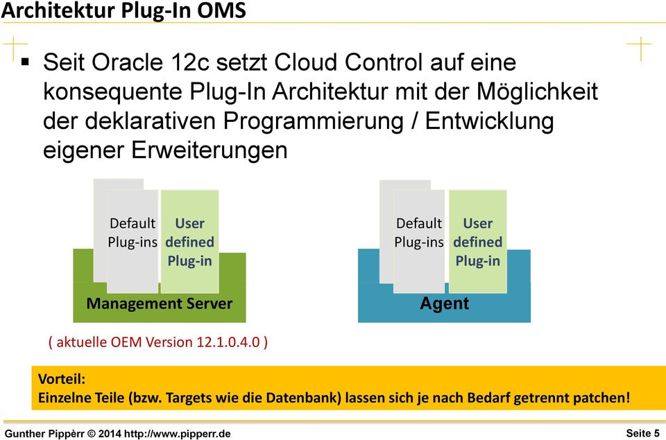 defined Plug-in Default Plug-ins User defined Plug-in Management Server Agent ( aktuelle OEM Version 12.1.0.
