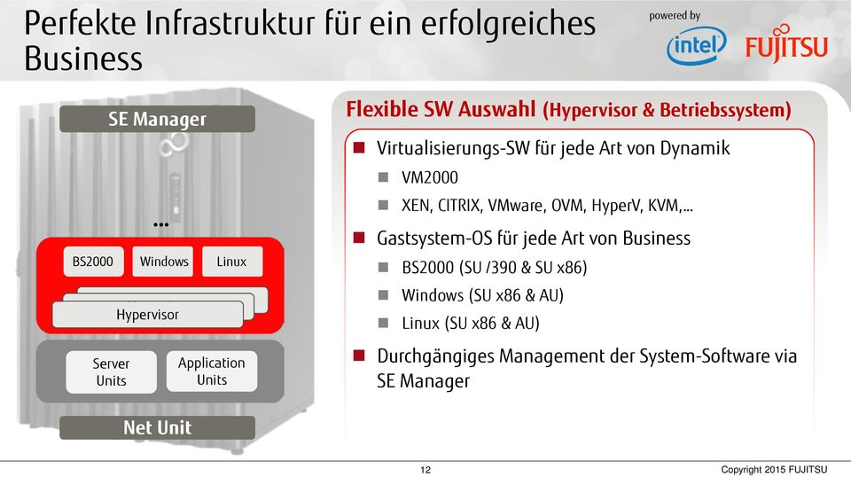 VM2000 XEN, CITRIX, VMware, OVM, HyperV, KVM, Gastsystem-OS für jede Art von Business (SU /390 & ) Windows ( &