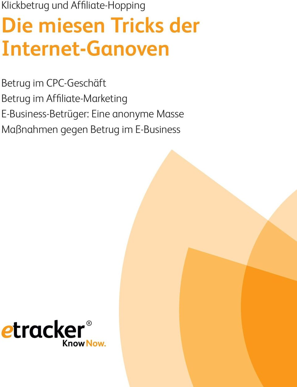 Betrug im Affiliate-Marketing E-Business-Betrüger: