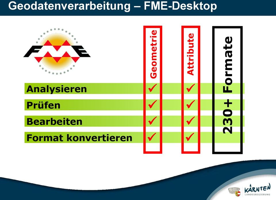 FME-Desktop Analysieren