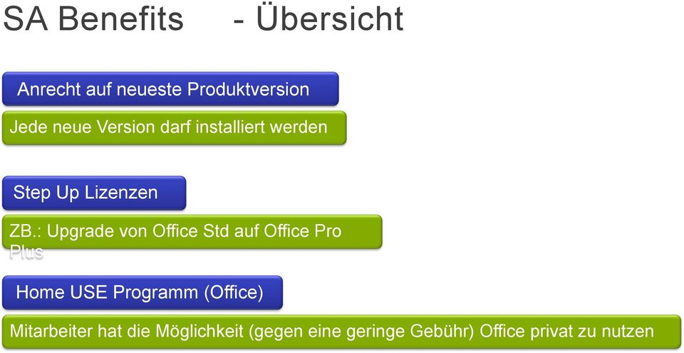 : Upgrade von Office Std auf Office Pro Plus Home USE Programm