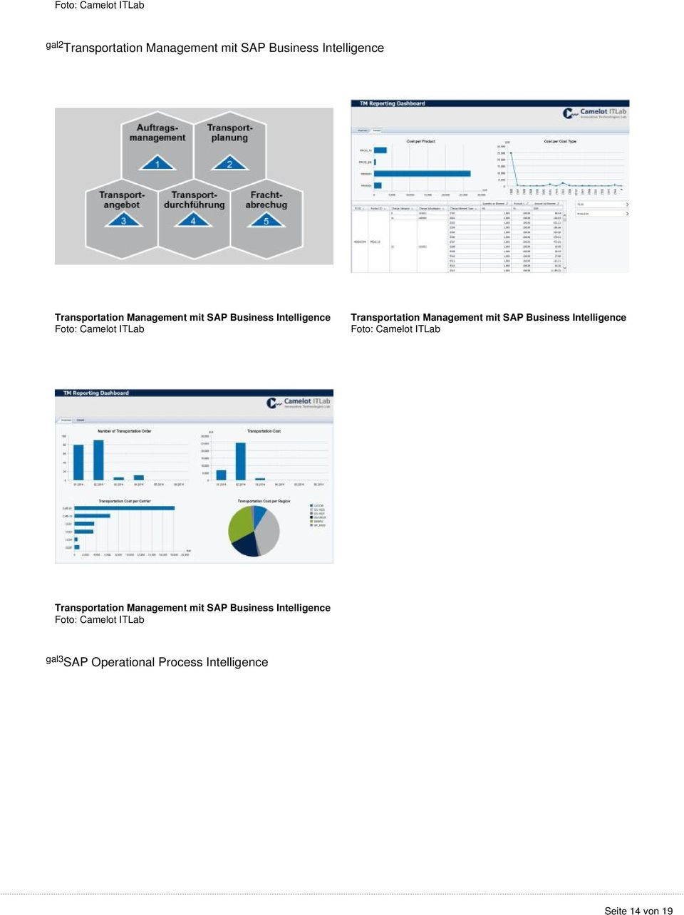 Management mit SAP Business Intelligence Transportation Management mit