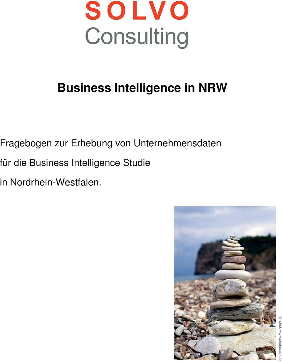 Business Intelligence Studie in