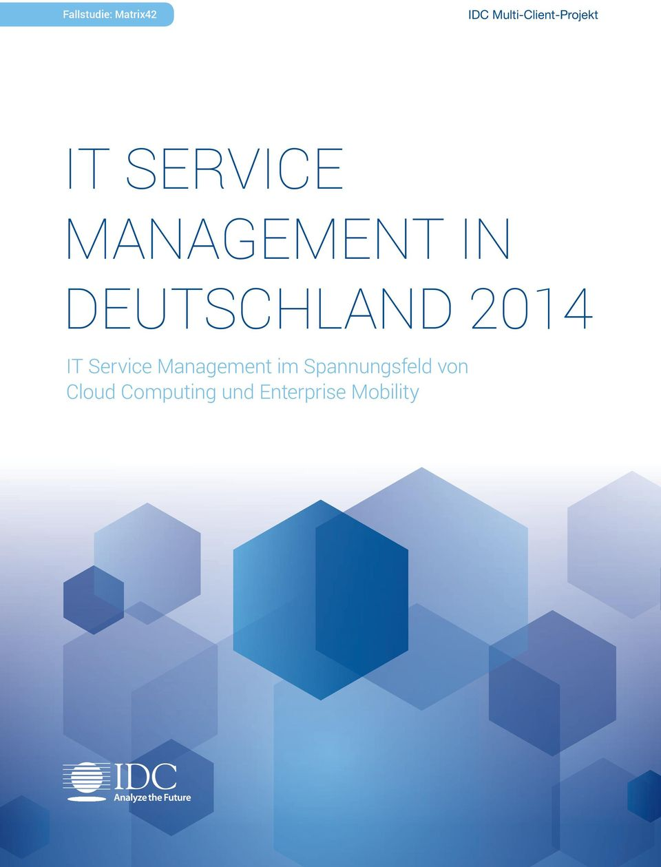 IN DEUTSCHLAND 2014 it Service management