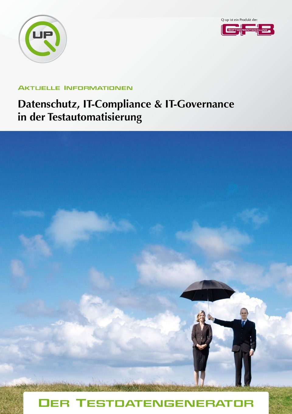 IT-Compliance & IT-Governance in der