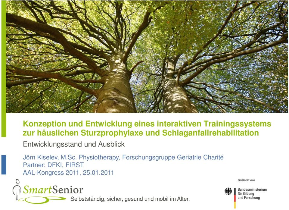 Physiotherapy, Forschungsgruppe Geriatrie Charité Partner: DFKI,