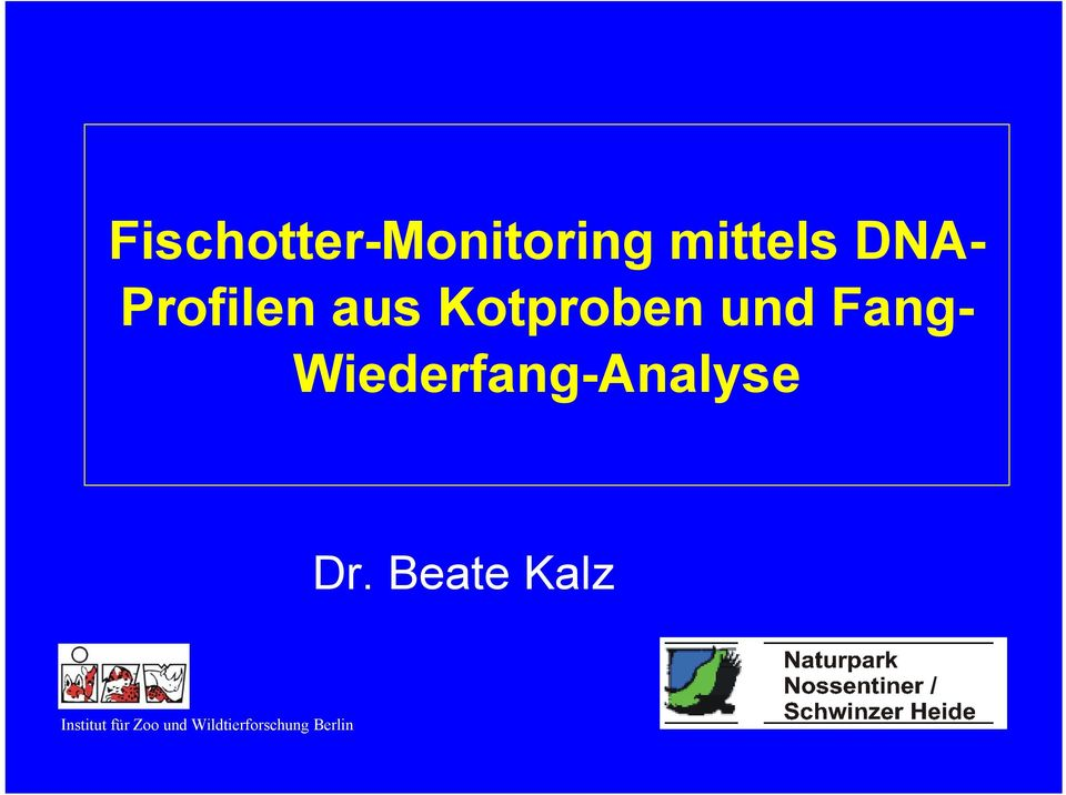 Wiederfang-Analyse Dr.